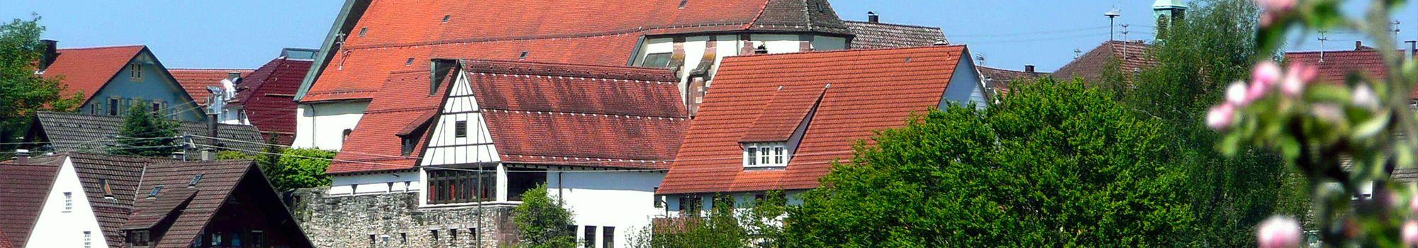 Referenzbericht Stadt Dornhan