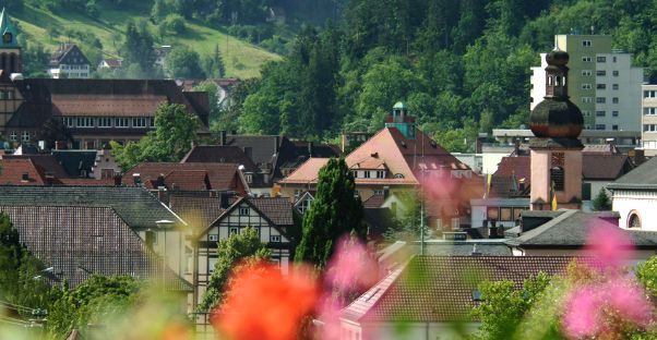 Referenzbericht Stadt Schramberg